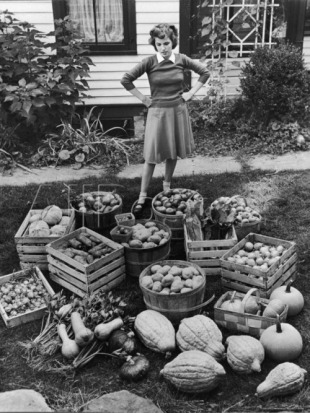 Woman looking at Victory Garden harvest waiting to be stored away for Winter.jpg